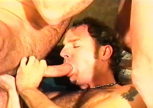 Three experienced gay studs round fat dicks enjoying immutable anal action