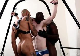Blindfolded vapid boy has two dark skinned stallions sharing his ass