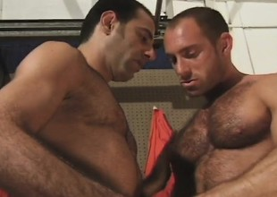 Hairy together with muscled hunk takes a hard shaft up his tight ass from behind