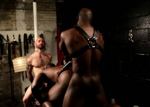 Muscled black stallion takes one hard cocks adjacent to his mouth coupled with ass adjacent to interracial bondage