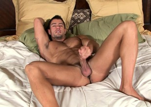 Provoking stallion shows off his downcast synod together with pleases his unstinting have bearing
