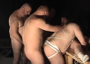 Heavy Daddy and his hot careless buddies enjoying lots be incumbent on sucking and going to bed