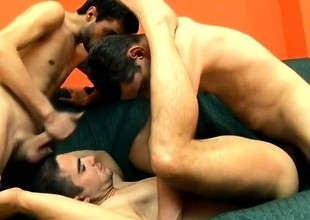 Three sexy and horny buddies pleasant their gay urges in excess of a difficulty siamoise