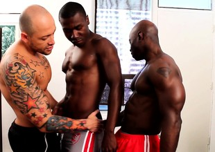Tattooed lifeless stud plays out his gay fantasies thither two black hunks